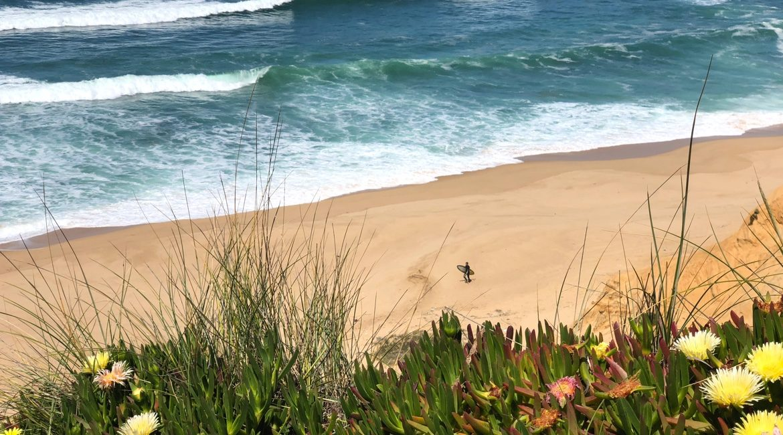 Portugal surfen - Nordportugal, Zentrum, Algarve, Madeira, Azoren