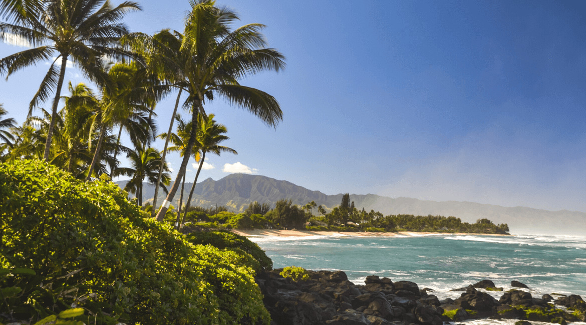 Hawaii surfen - Oahu - Northshore